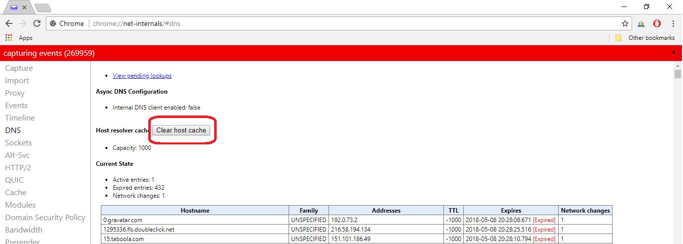chrome net internals dns