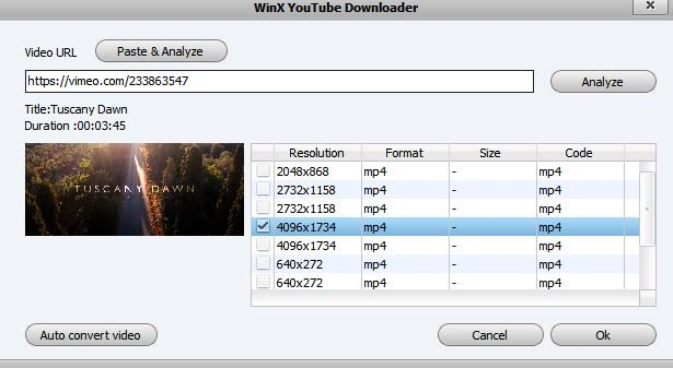 Navigate Winx Youtube Downloader - Paste and Analyze
